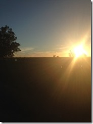 sunset_thumb.jpg
